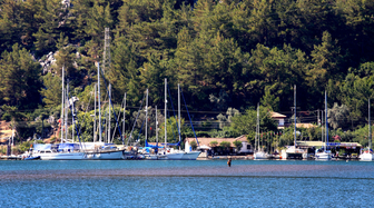 Orhaniye Butik Otelleri